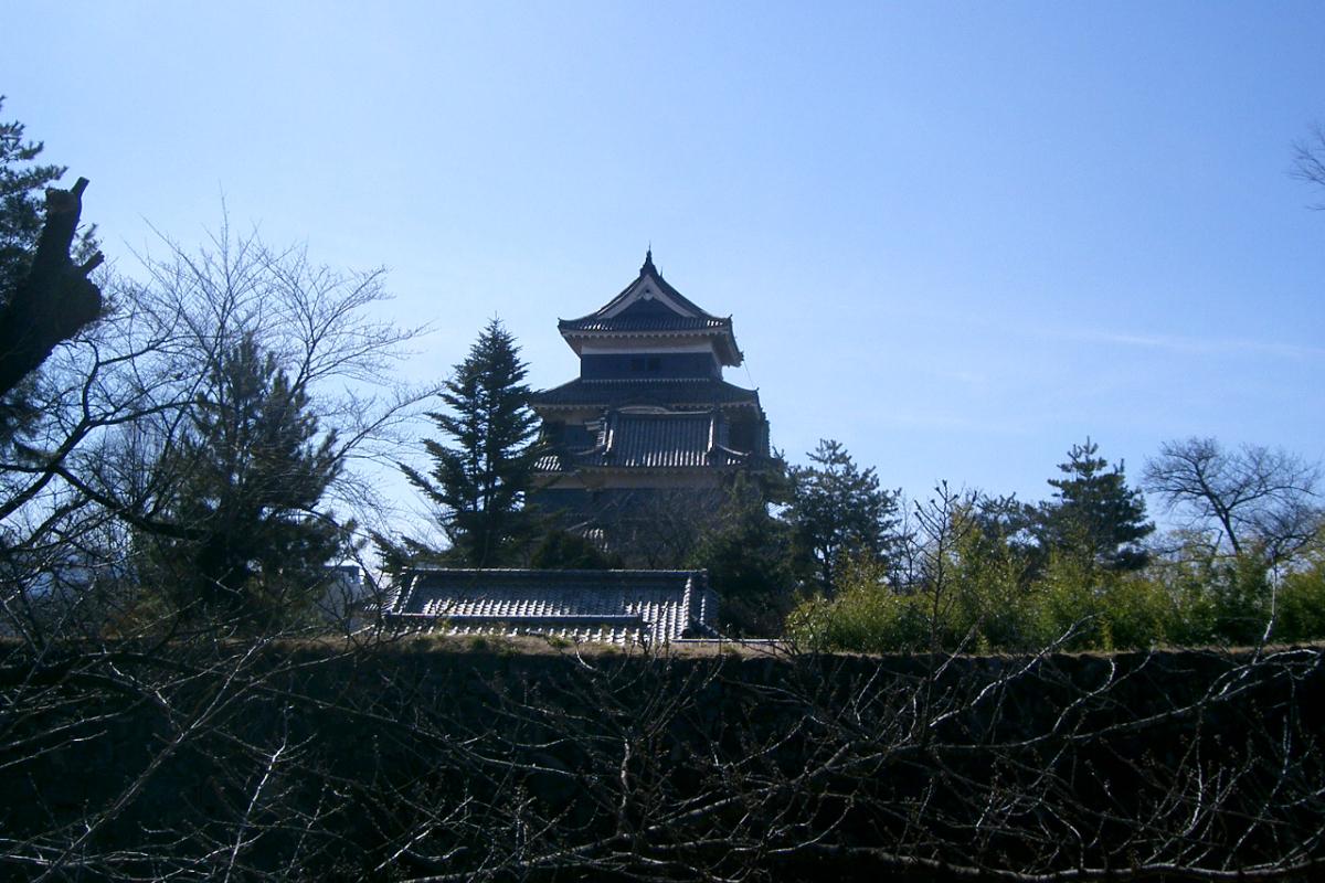松本神社から見る松本城
