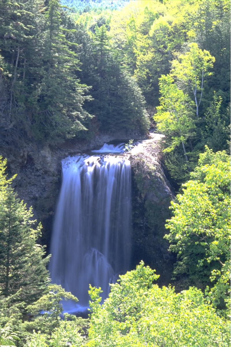 乗鞍高原の善五郎の滝